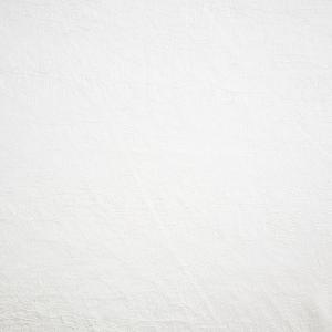 Ткань Тергалет цвет молочный 11                    (ш.280см)